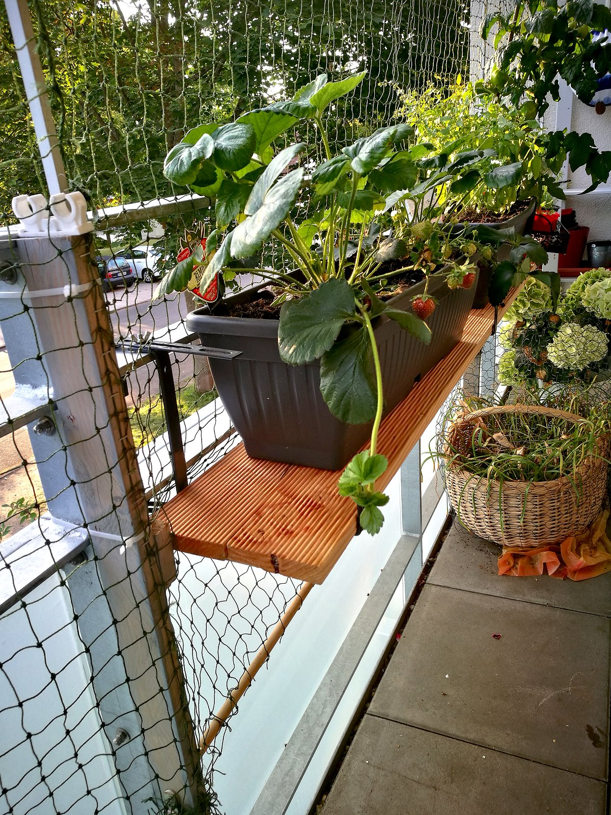 {Creadienstag} Terrassendielen als Balkonkastenablage
