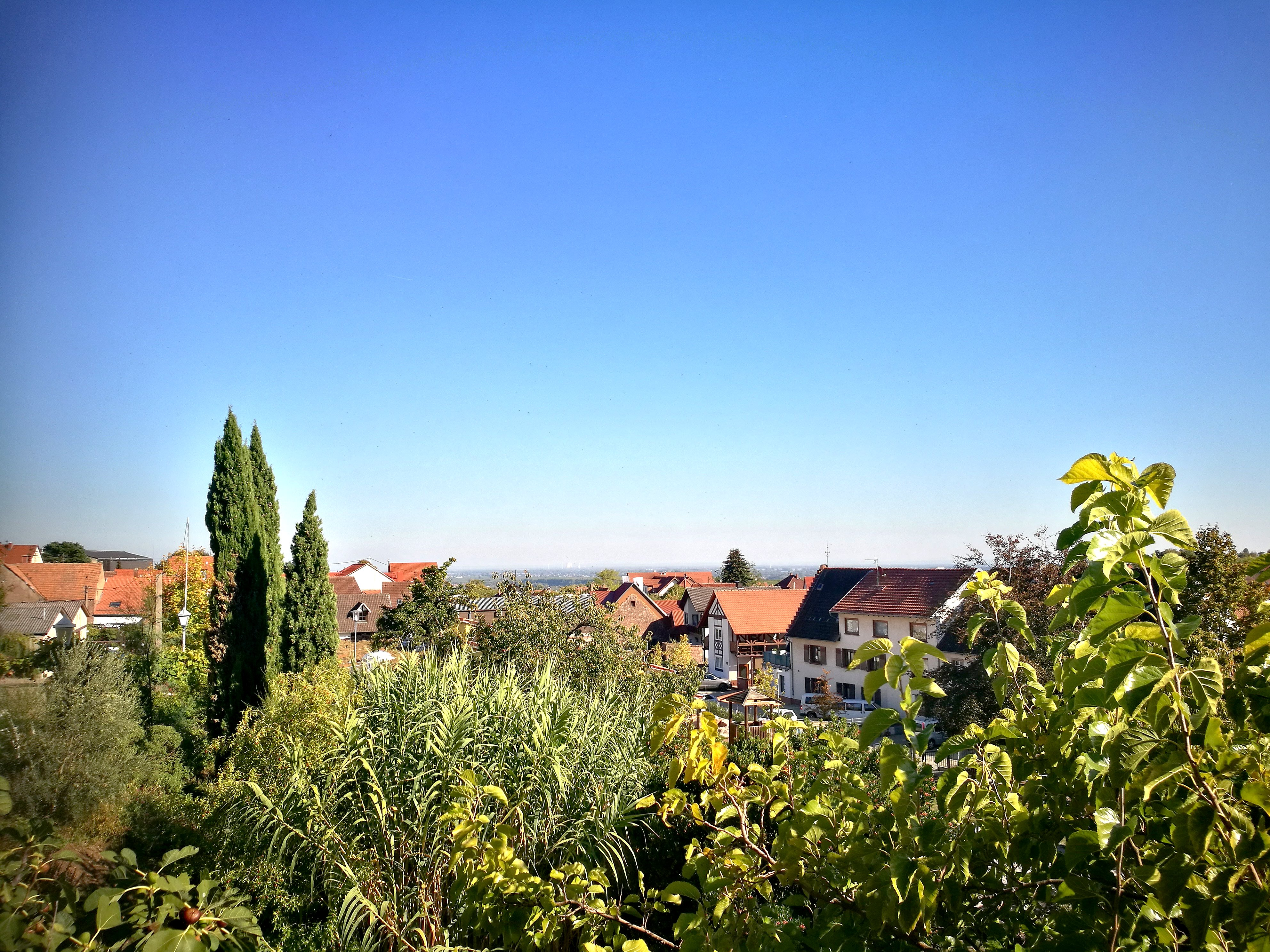 Pfalz 2018 (Teil 1)