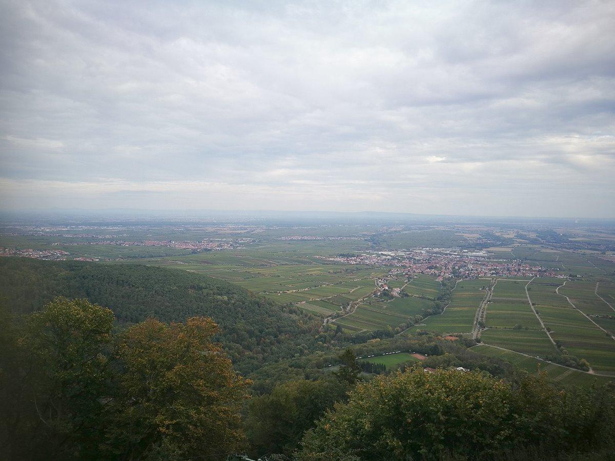 Pfalz 2018 (Teil 3)